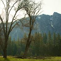 San Francisco Landscape Photography Paul Pardue 004240 Yosemite