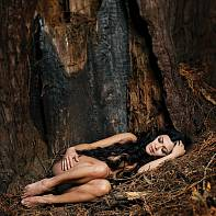 San Francisco Fine Art Nude Photography Paul Pardue 20140116_132102_014321 Flash, Forest, Implied, Outdoor, Strobe, Strobist, Synchro Sun, Tree